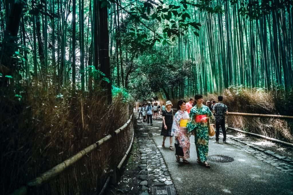Visiting Japan: The Best Things To Do While In Japan