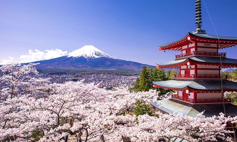 Best In Japan: Things You Should Expect To See Here