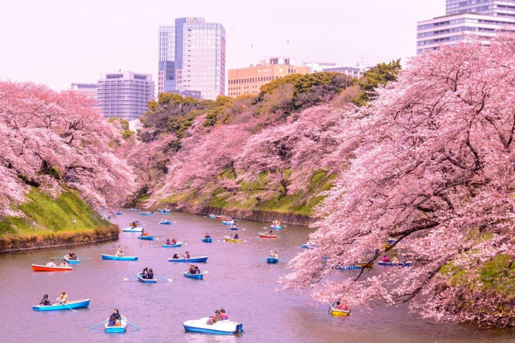 Different Destinations In Japan - How To Choose One?